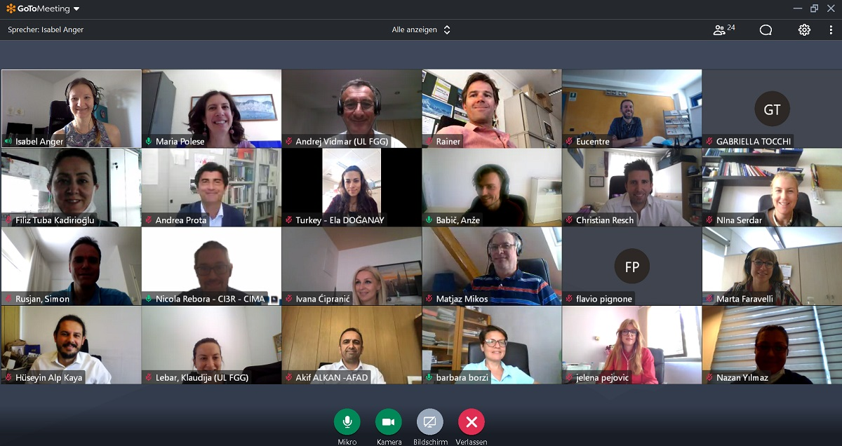 Screenshot of BORIS project meeting with all participants - June 15th, 2021